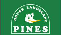 Pines House Landscape